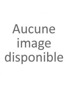 Collier argent avec médaille ovale symbole vendée